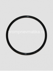 Кольцо уплотнительное 304-168-7-3