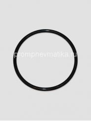 Кольцо уплотнительное 304-168-7-2