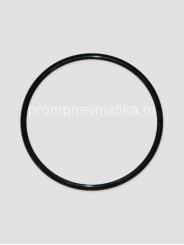 Кольцо уплотнительное 304-98-04-06